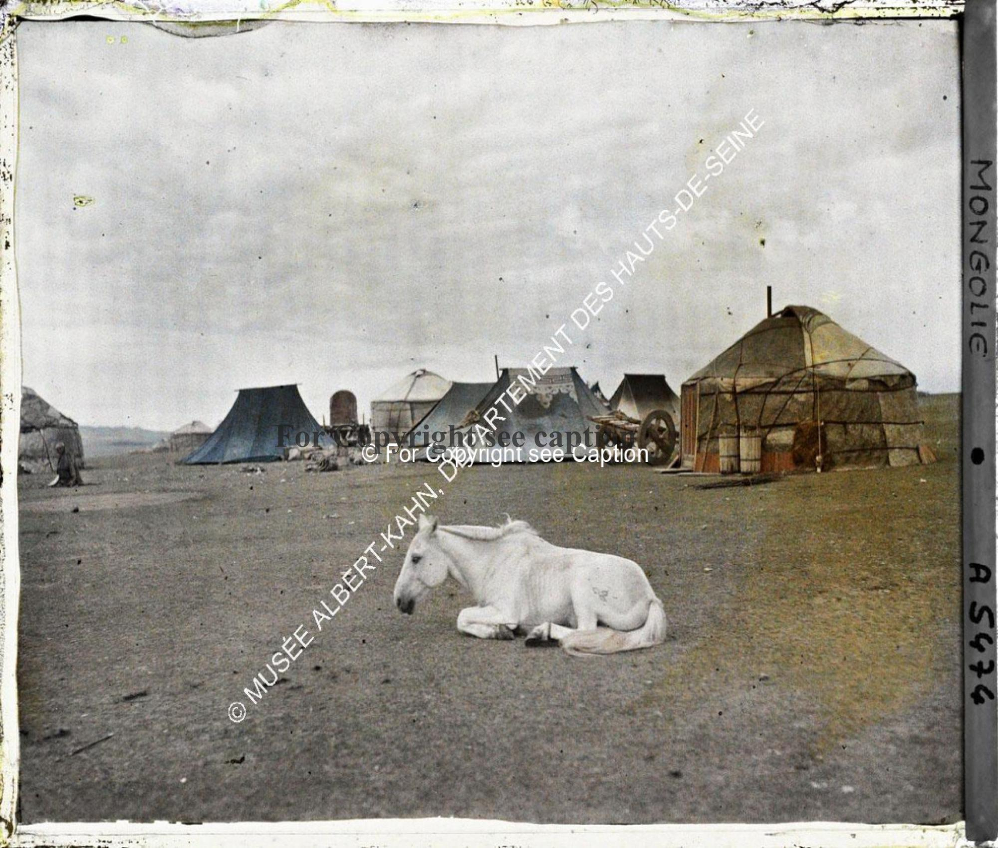 A horse in front of yurts and tents, near Gandan (?). Musée Albert-Kahn. A 5474. Photo by Stéphane P